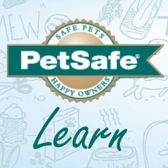 PetSafe Learn