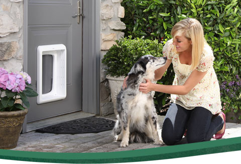 Dog Doors Petsafe Pet Doors For Dogs Cats