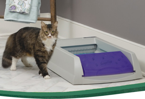 Cat Litter Boxes Self Cleaning Amp Automatic Litter Boxes
