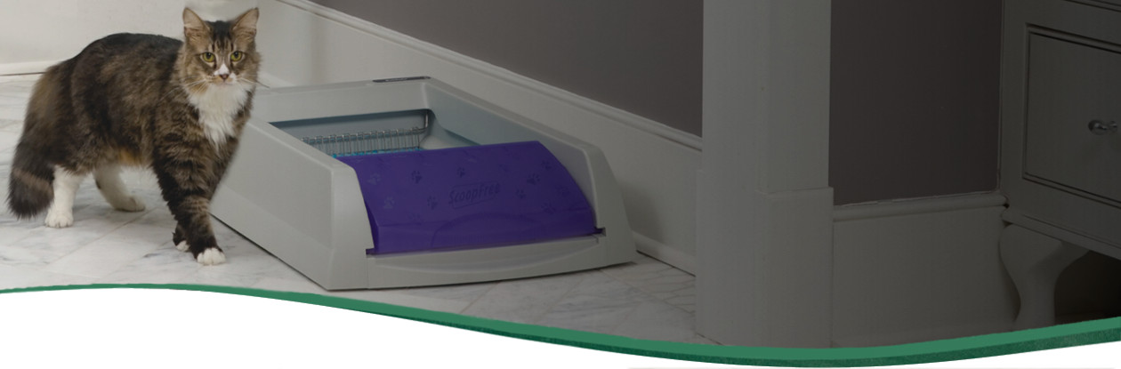 Self-cleaning automatic litter boxes & Self-Cleaning Cat Litter Box | PetSafe Litter Boxes for Cats | PetSafe Aboutintivar.Com