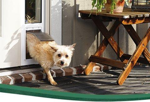 Pet Patio Door Panels | Sliding Door Dog Door Inserts | PetSafe