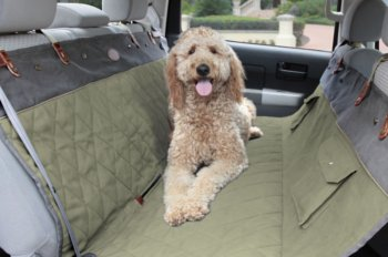 Dog Owners Know That Car Rides Are Delight For Our Furry Friends But Keeping The Backseat Clean Can Be A Challenge Now You Help Protect Your Cars