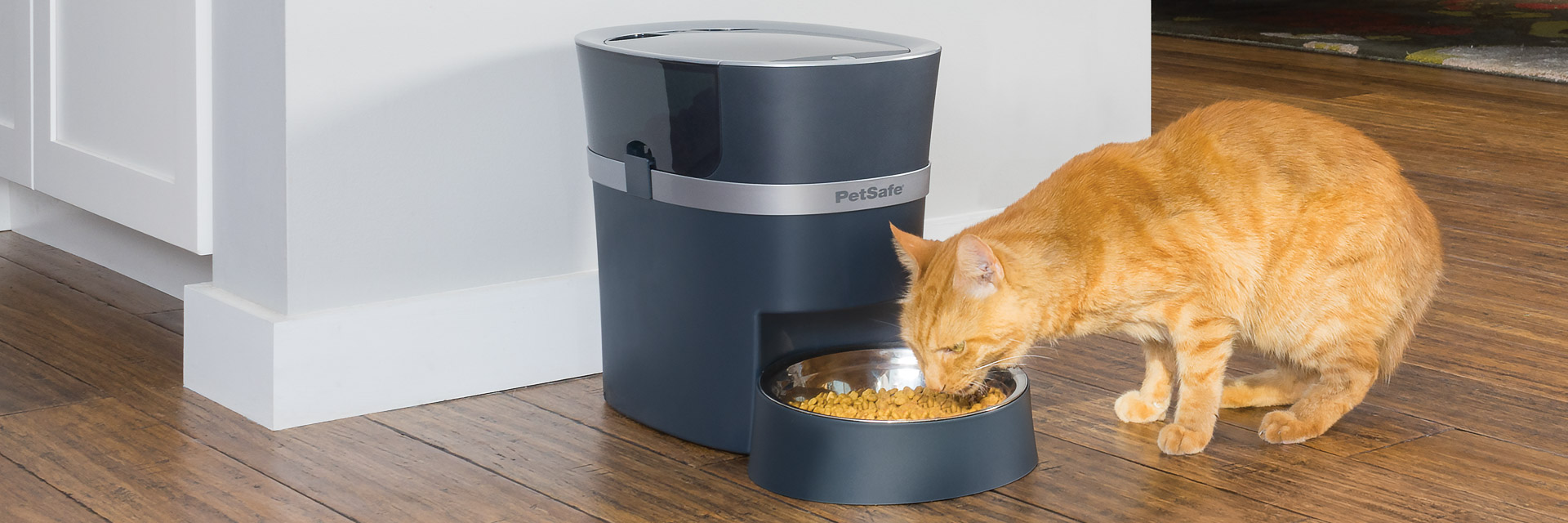 Dog eating from PetSafe feeder