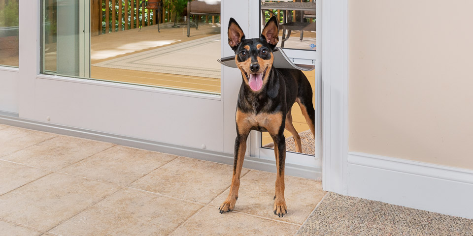 Sliding Glass Pet Doors