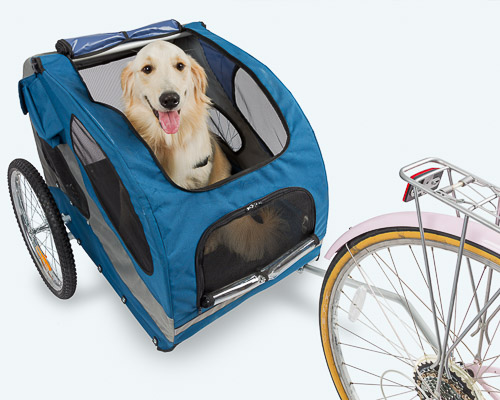 Dog sitting in a trailer being pulled by a bicycle