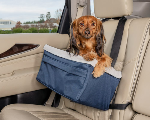 Dog sitting inside quilted dog safety seat in the back seat of a car
